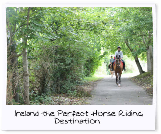 Horse Riding and English at the Irish College of English