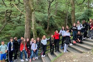 junior trips in ireland
