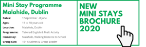 Mini Stay Header Website SUMMER CAMP BROCHURE 2020 Ireland Dublin